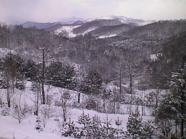 snowview-90s.JPG