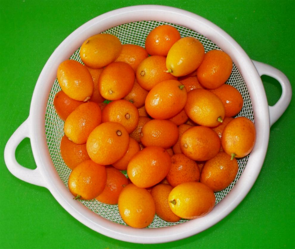 kumquats-in-strainer
