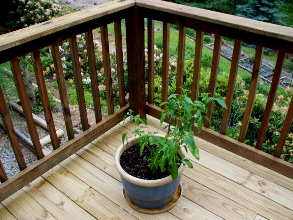 railings-done